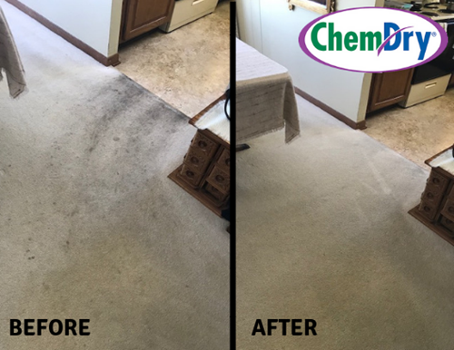 Professional Carpet Cleaning In Plymouth Mn Viking Chem Dry